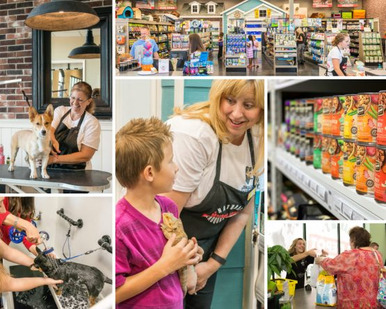 Collage of pet depot retail store scenes